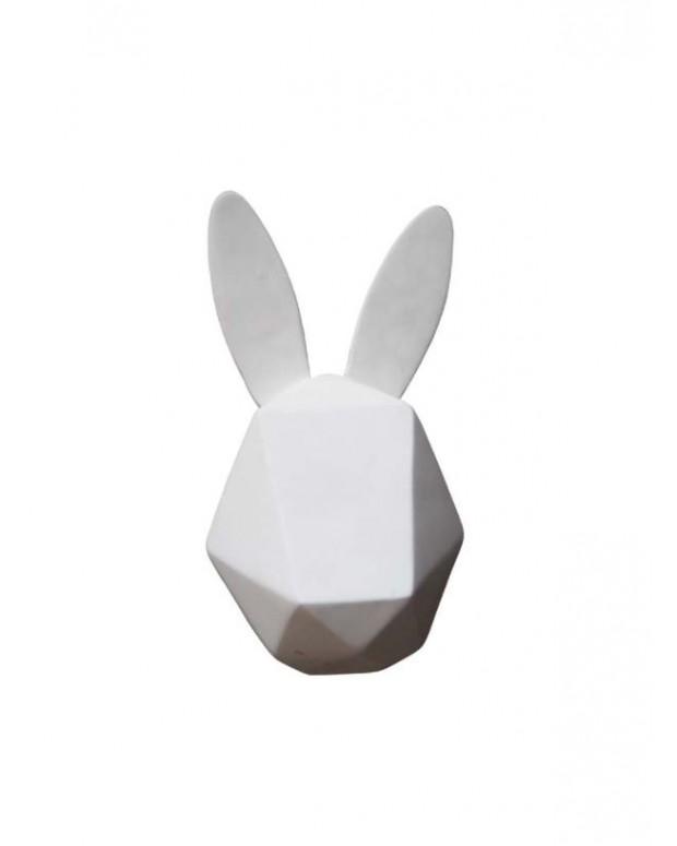 Trophée lapin blanc